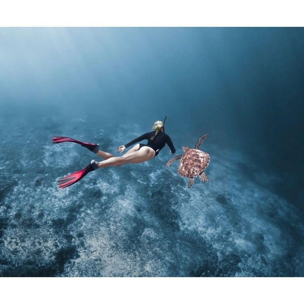 Papua Diving; Best Dive Site in Raja Ampat