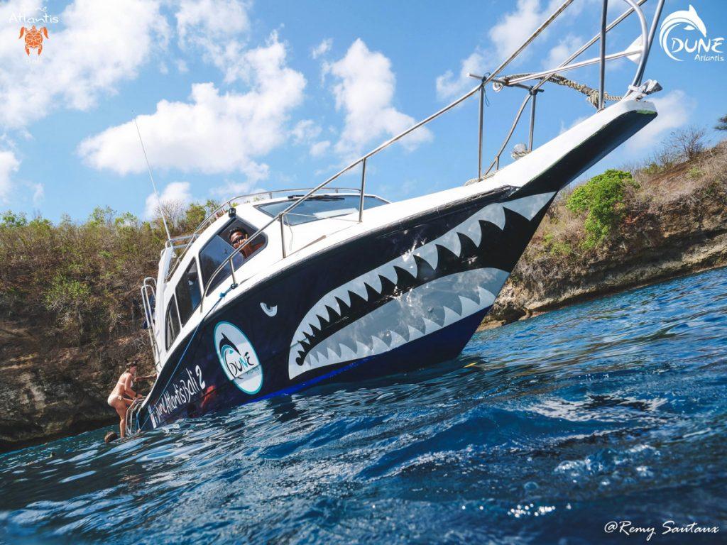 Dive Safari versus Day Trip Diving